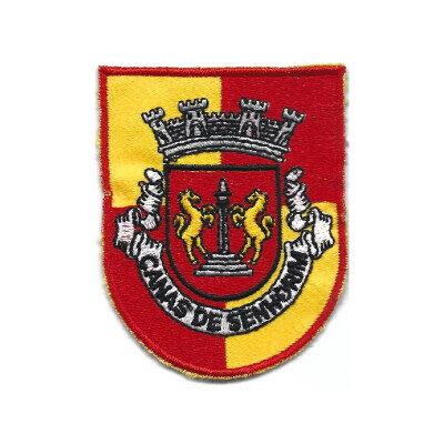 emblema canais de senhorim brasao