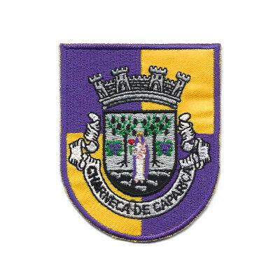 emblema charneca de caparica brasao