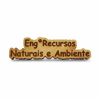 pin madeira eng recursos naturais ambiente