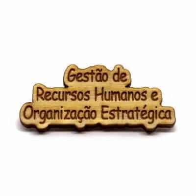 pin madeira gestao recursos humanos organizacao estrategica