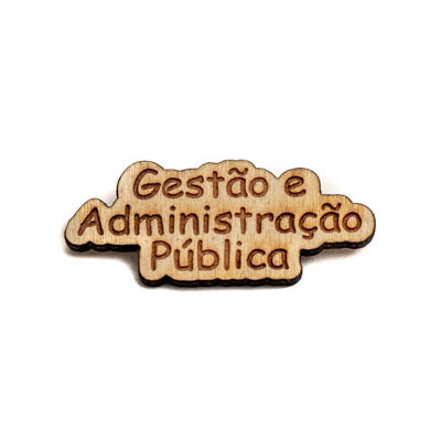 pin madeira gestao administracao publica